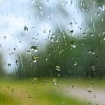 梅雨時に増えるカビへの効果的な対策や掃除方法のポイントは?