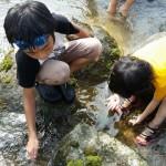 キャンプ場で子どもと楽しむおすすめの遊び方と遊び道具