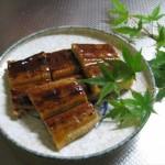うなぎで夏バテ防止!一緒に食べると効果アップな食材レシピもチェックしよう!