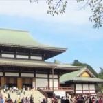 成田山の梅まつり2017はいつ開催されるの?開花情報は?
