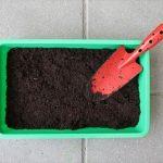 夏野菜の家庭菜園 プランターでお手軽に育てる方法